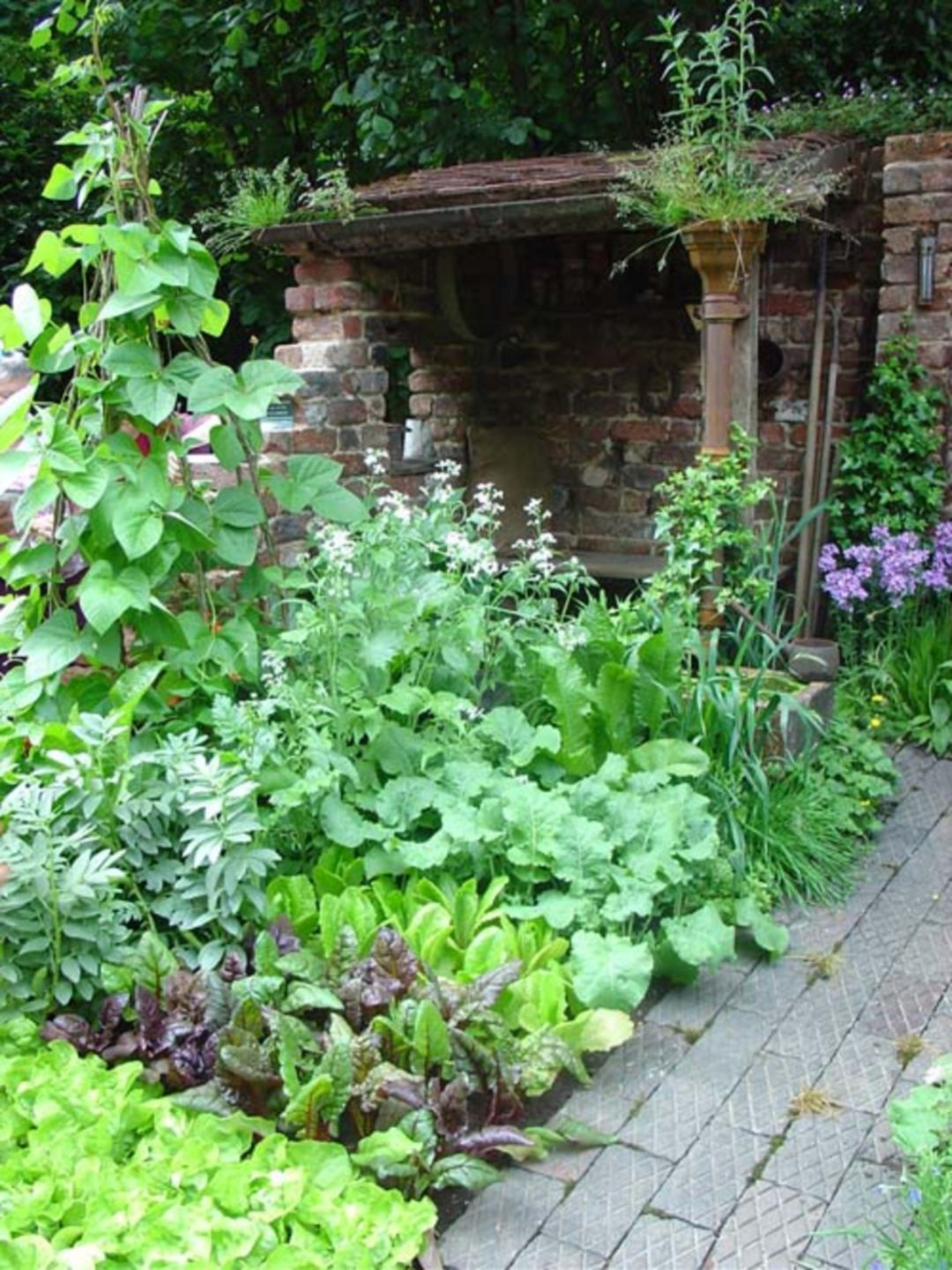 Landscape of house garden  Lush Garden  Check this useful article by going to the link at