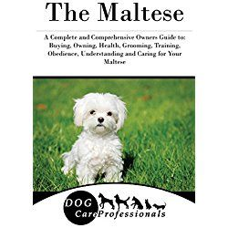 The Complete Maltese Book Dog Training Tips Dog Training