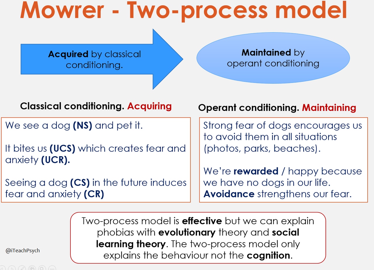 Psych Support Operant Conditioning Social Influence Research Methods