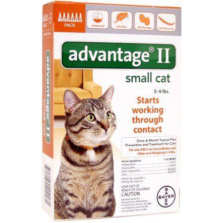Pets Flea control for cats, Flea medication for dogs