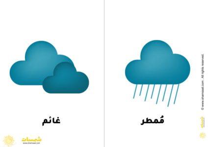 بطاقات حالة الطقس الفصول الأربعة للاطفال 2 Novelty Omar Ice Tray