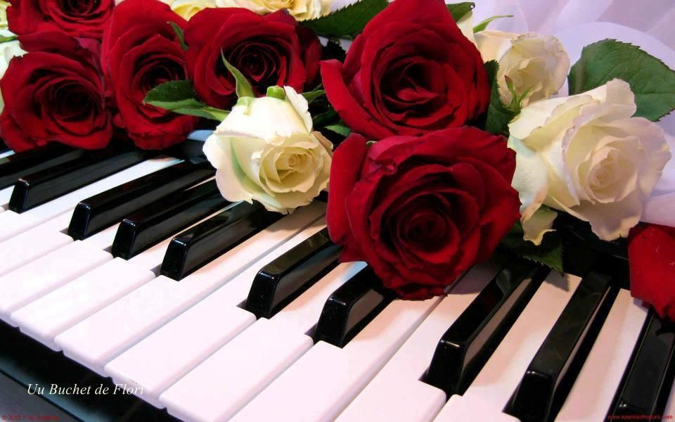 Play Misty for me.. (With images) | Rose, Piano, Red and ...