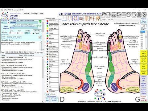 ReflexoVISU logiciel pour medecines douces, Reflexologie etc - YouTube