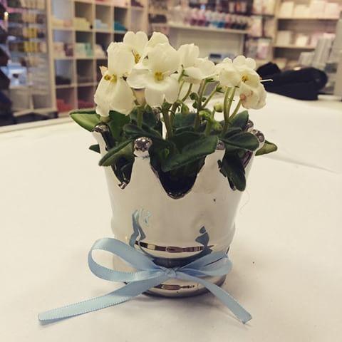 Endelig! Disse nydelige pottekronene er tilbake på lager 💙 Fyll de med blomster, godis eller lys ⭐️ #decorium #blomster #blomstepotte #krone #sølv #blomst #interiør #dåp #babyshower #barsel #navnefest #bordpynt #påbordet #hjemme #decorium #decoriumno #butikk #nettbutikk #oslo