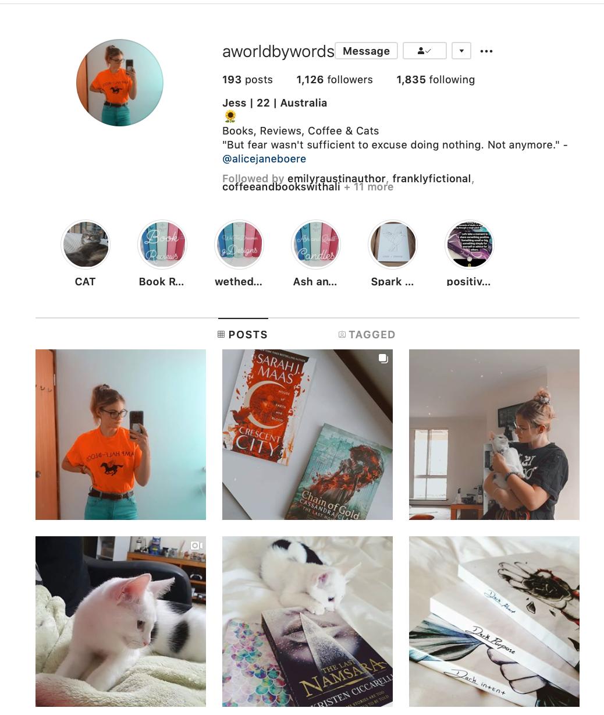 Just 5 of My Favorite Instagram Accounts Coffee, Cat