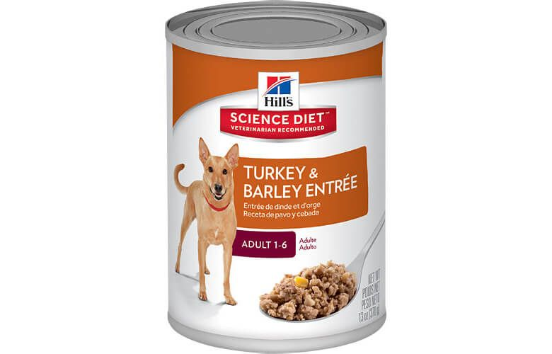 Another Dog Food Recall This Time From Brands Science Diet And Hill S Prescription Diet Dog Food Recipes Food Recalls Dog Food Recall