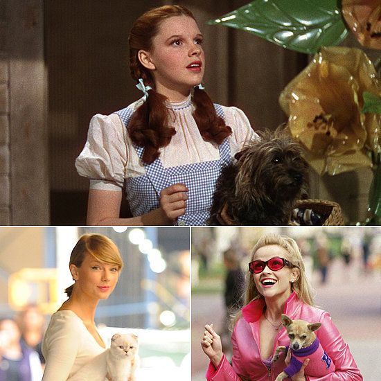 Got a Furry Sidekick? The 10 Best Pet-Meets-Pop Culture Halloween - pop culture halloween costume ideas