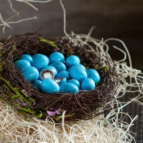 Nested Candies in birdsnest. Cute idea for Easter!