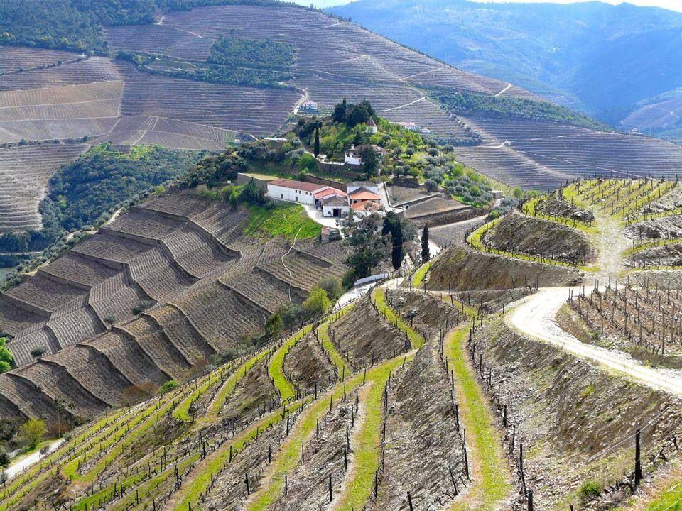 Douro Quinta do Crasto Wineries - Portugal Pinterest Portugal