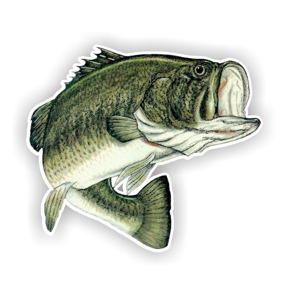 Bass Fish Jumping Clip Art 70 Fishing Decals Largemouth Bass Fishing Vinyl Sticker