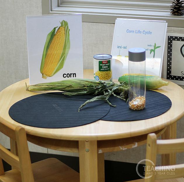 How to Set Up Your Preschool Science Center #preschoolclassroomsetup