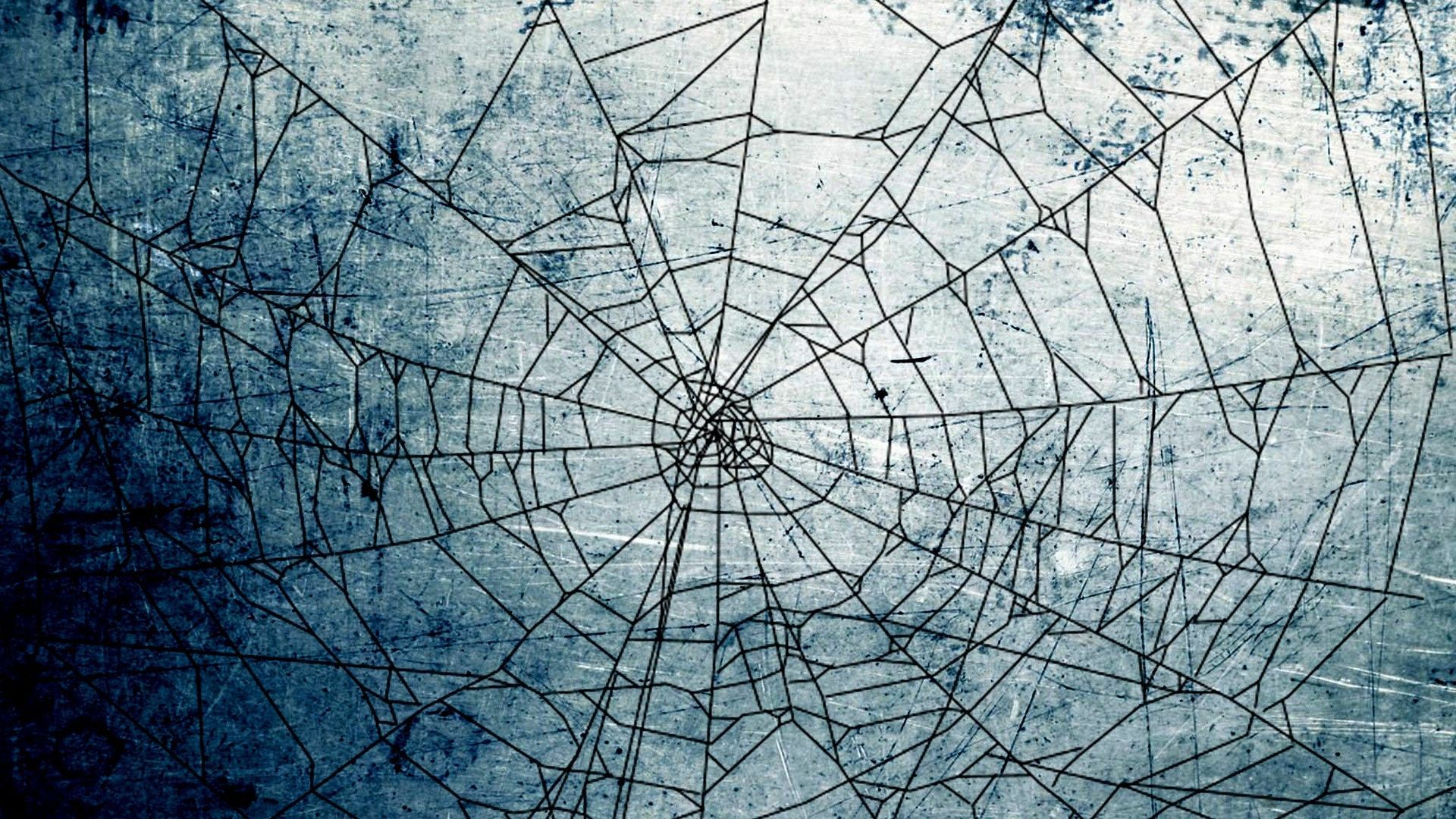Spider Web Wallpapers 16 Best Free Spider Web Hd Wallpaper For Iphone Hd Wallpaper Iphone Amazing Hd Wallpapers Hd Wallpaper