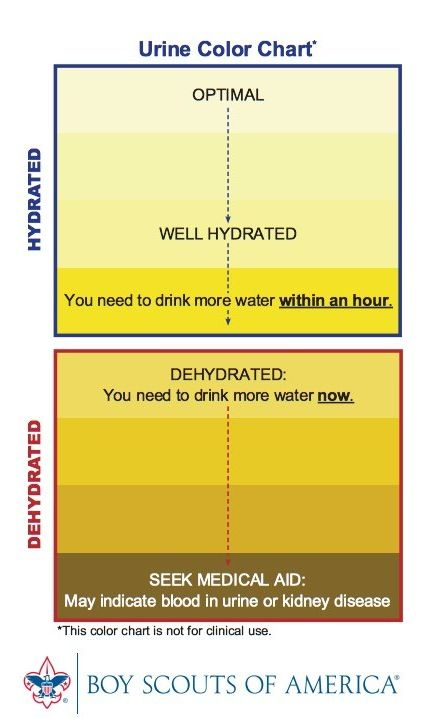 haha, who knew! (Iu0027m going to drink so water right now just in - stool color chart