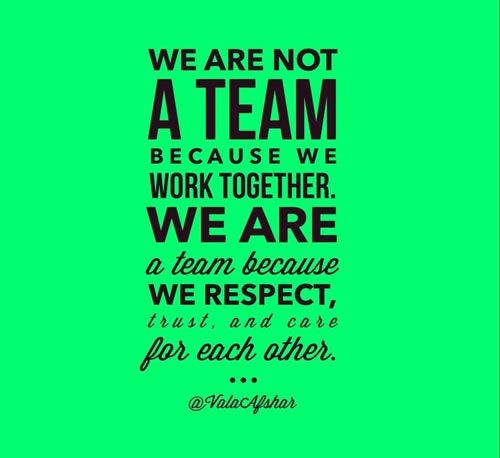 Pin On Teamwork Quotes