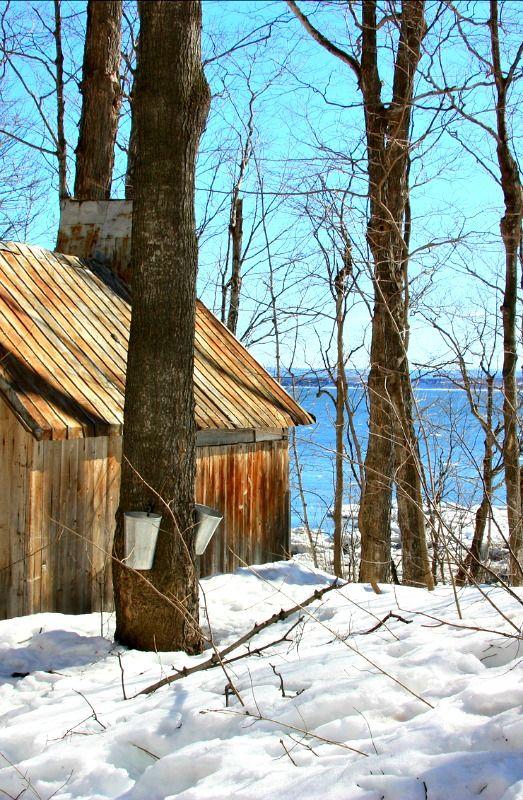 Quebec sugar shack in winter...