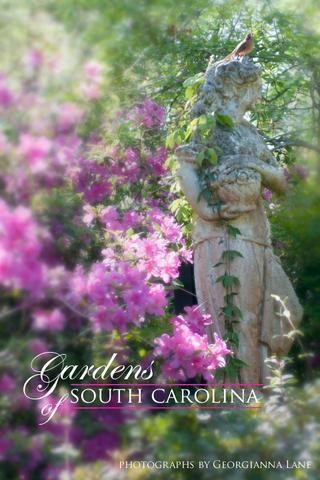Gardens of South Carolina