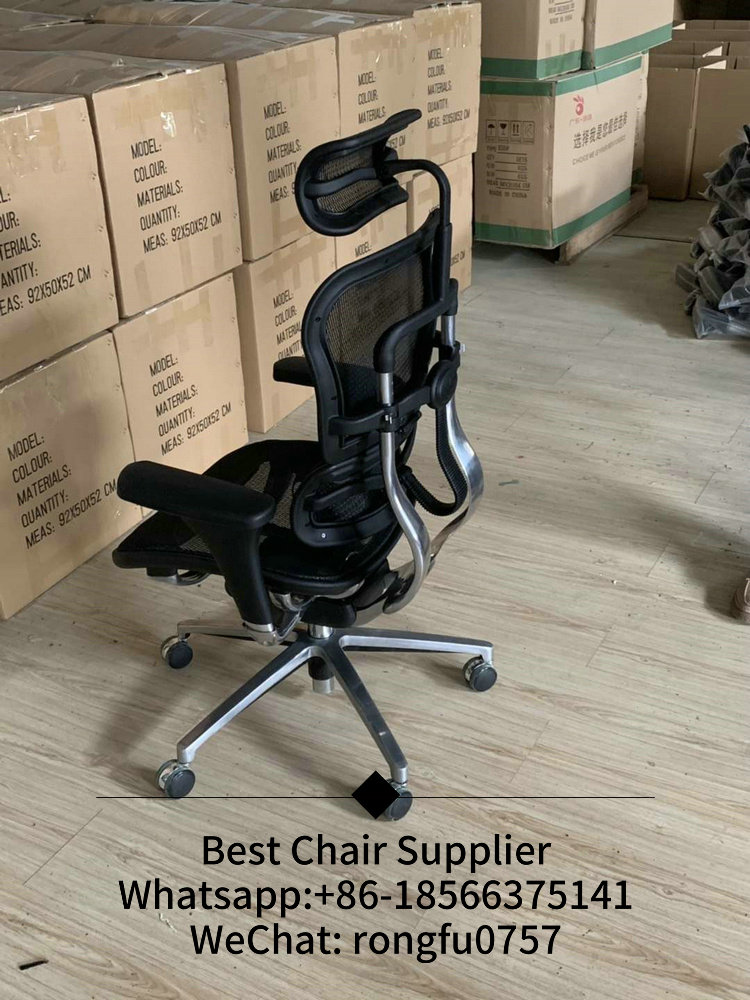 Ergohuman Plus Elite V2 Best Ergonomic Chair Mesh Office Chair