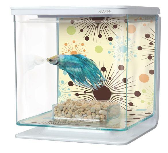 Aquarium Fish Products Accessories Online Store In India Betta Aquarium Betta Pet Supplies
