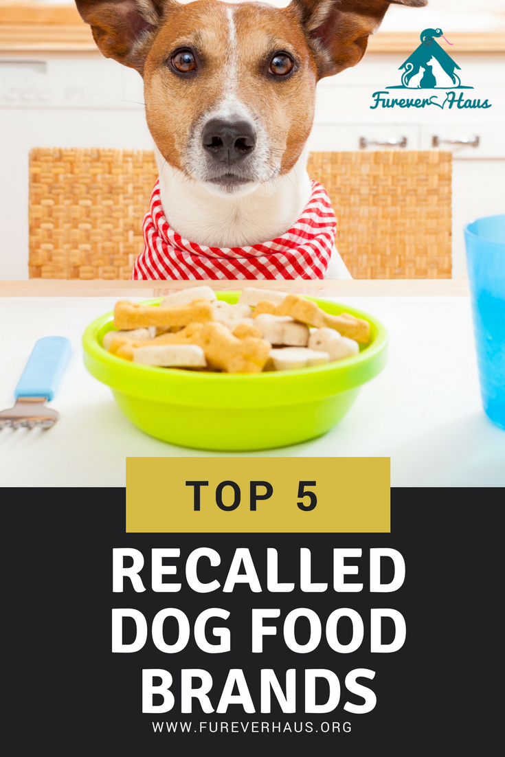 Know what you are feeding your dog. Link to FDA recall