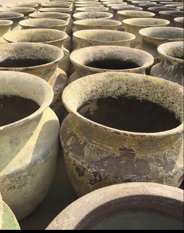 Buy Atlantis Pots Wholesale