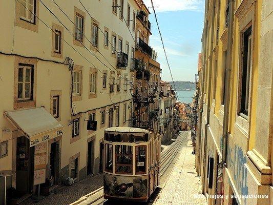 La Lisboa más literaria, del Chiado al Bairro Alto - via MisViajesYSensaciones 18.03.2015   Al oeste del barrio de la Baixa situado en una pequeña colina se encuentra el barrio del Chiado, uno de los más bohemios de Lisboa, donde sus calles sirvieron de inspiración a poetas y escritores de finales del siglo XIX y principios del XX. Aquí se reunían en animadas tertulias en algunos de los cafés de este bello barrio, como por ejemplo el Café a Brasileira, situado en la Rua Garrett, punto de…