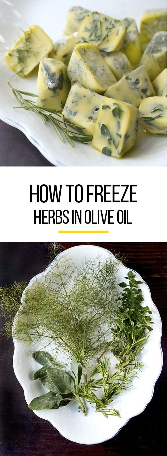 How to Freeze Herbs in Olive Oil. Use all those trays for ice cubes to preserve summer herbs like rosemary, sage, thyme, and oregano. This also works for soft herbs like mint, basil, lemon verbena, and dill.