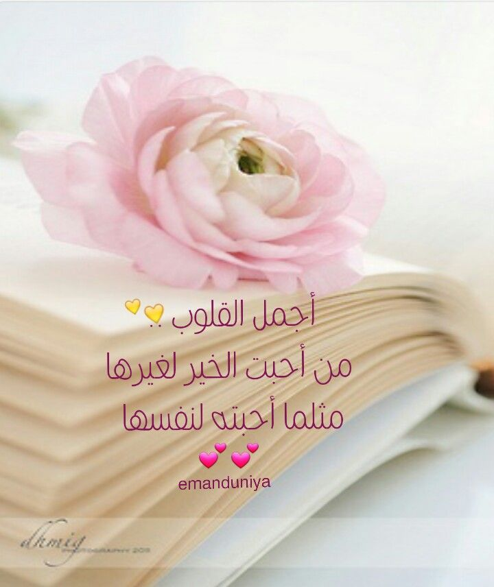 أجمل القلوب Arabic Quotes Words Islamic Quotes