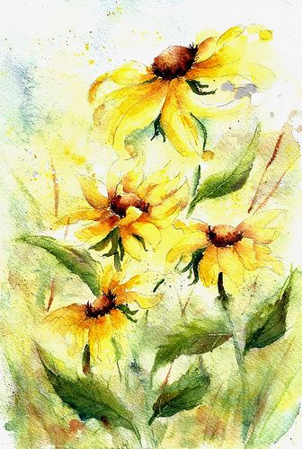 Pin By Connie Racine On Brown Eyed Susan Floral Watercolor