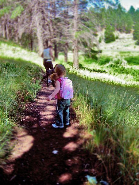 Dear Arizona Travel Flagstaff With Kids Ariztravel Com Arizona Travel Trip To Grand Canyon Arizona Activities