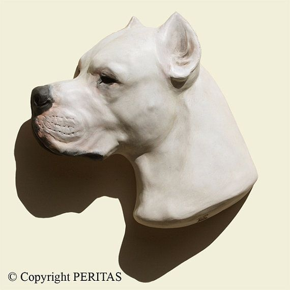 Items Similar To Hand Painted Dogo Argentino Dog Argentine Dogo Dogue Argentin Peritas Wall Sculpture Statue Fine Art Relief On Etsy Dogo Argentino Dog Dogs Dog Argentino