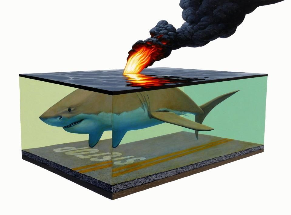 Flaming Shark