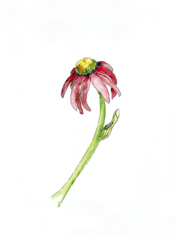 Watercolor Painting Botanical Art Print Simple Art Gift Ideas