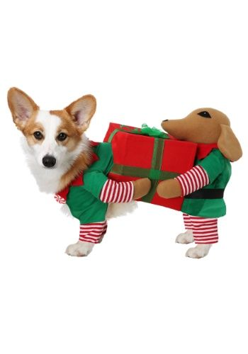 Pin By Dolife On Graphics Designs Layout Pet Costumes
