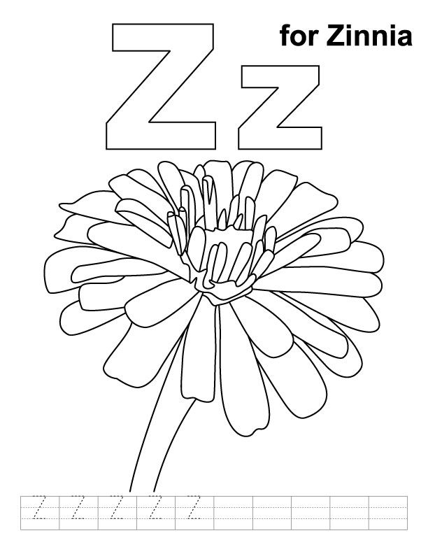 Z For Zinnia Coloring Page With Handwriting Practice Download