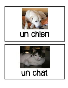 French Pet Vocabulary Flashcards and BANG game