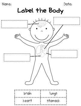 how our bodies work: k/1 human body science unit | all ... free body force diagram acceleration #14