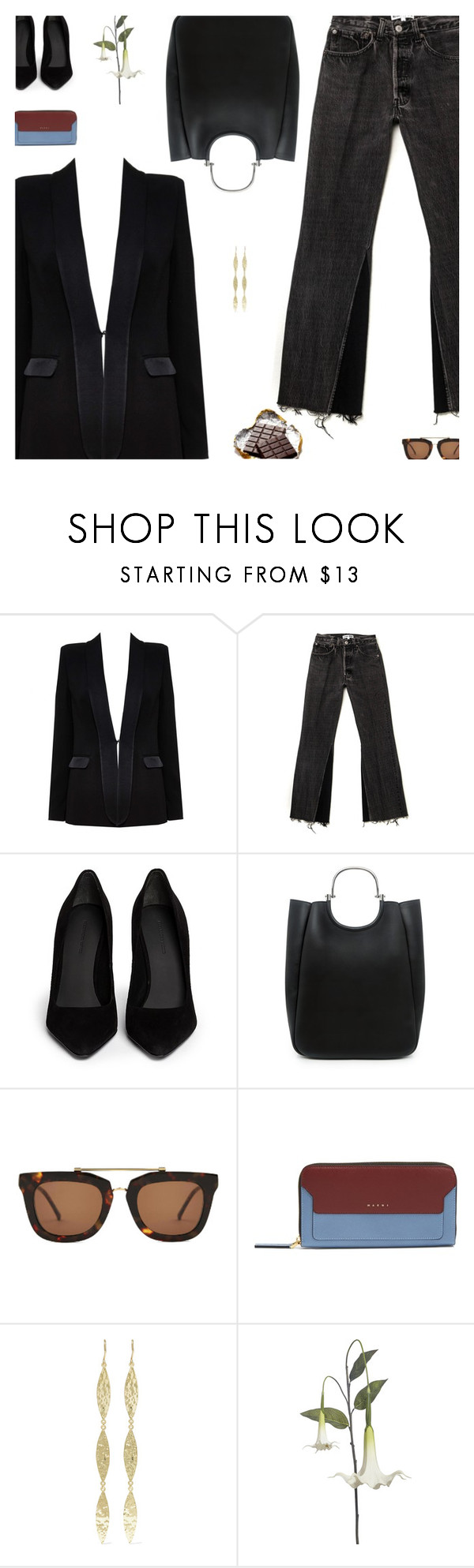 """""""Plainsong"""" by amberelb ❤ liked on Polyvore featuring Alice + Olivia, Alexander Wang, 10 Crosby Derek Lam, Kaibosh, Marni, Jennifer Meyer Jewelry and Pier 1 Imports"""