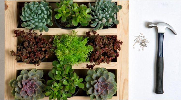 Mur v g tal conseils et photos inspirantes pour le cr er - Comment faire un jardin vertical ...
