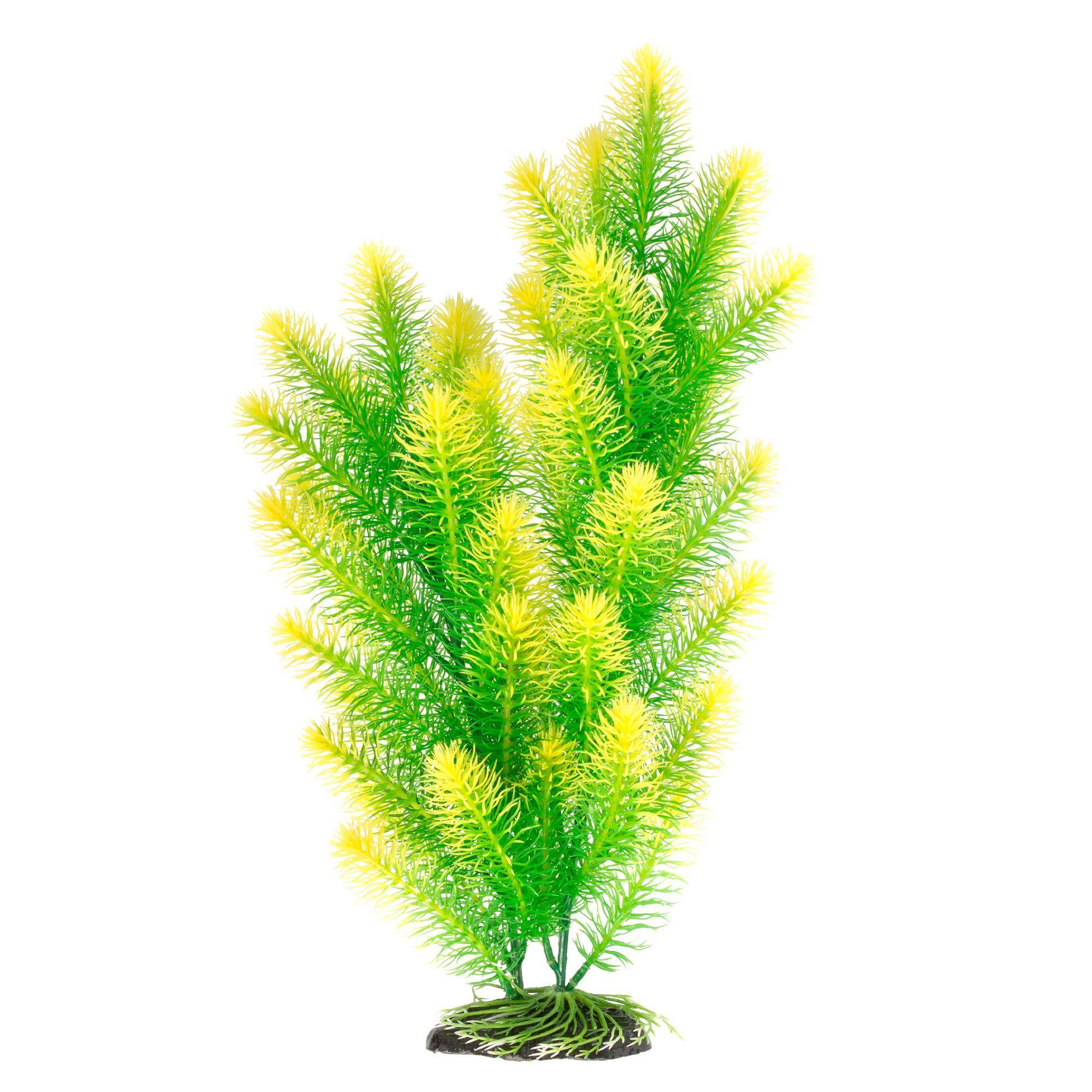 Top Fin Green And Yellow Fur Aquarium Plant Planted Aquarium Plants Short Plants