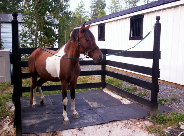 horse barn ideas stables horse farm