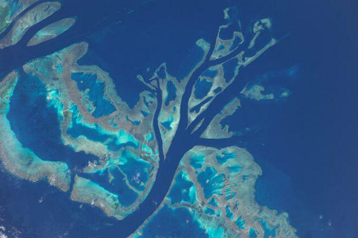 Great Barrier Reef From Space Great Barrier Reef Wonders