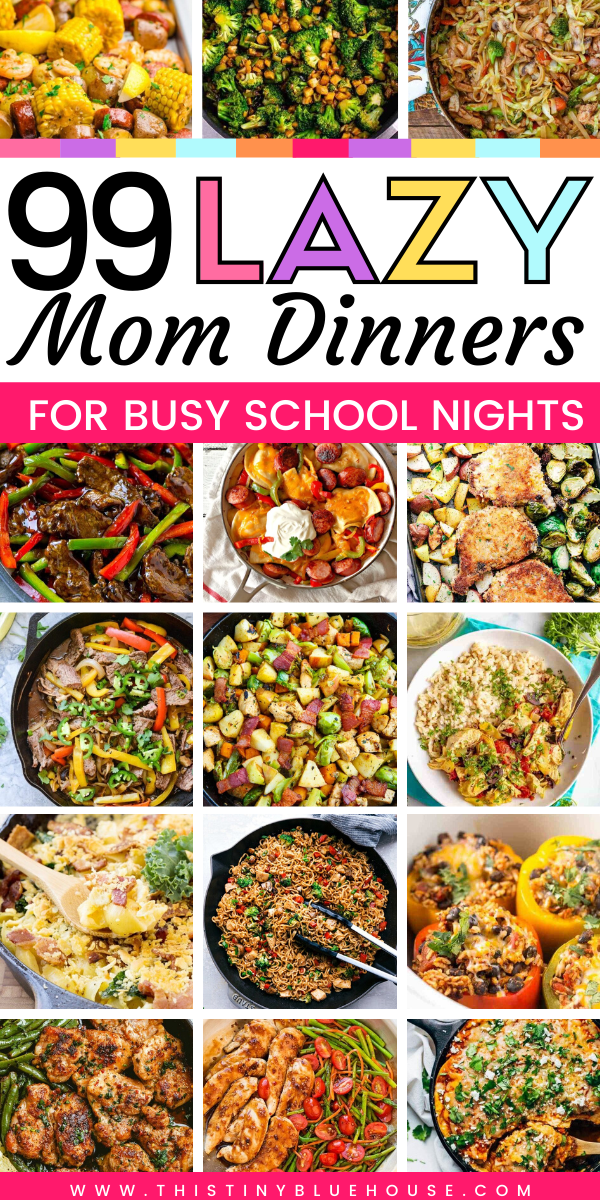 99 Best Crazy Busy School Night Meal Ideas