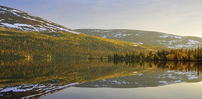 National Park in Lapland,Finland.   Pallas-Yllästunturin kansallispuisto.