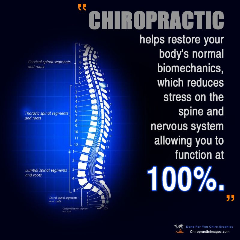 20+ Back to health chiropractic inspirations