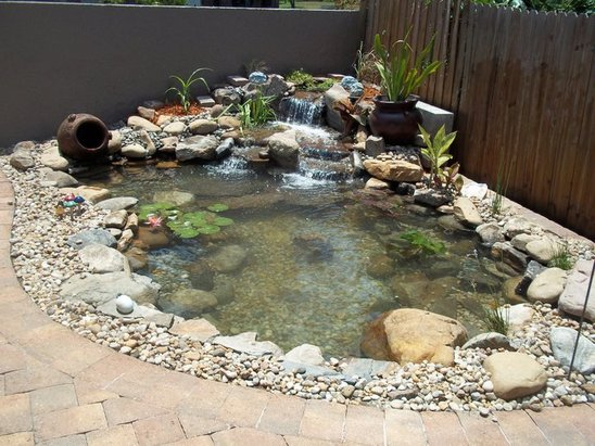 How Much Do Koi Ponds Cost In Orlando Central Florida With Images Ponds Backyard Water Gardens Pond Backyard Garden Design