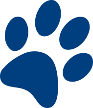 Dog Paw Prints Transparent Png Image With Transparent Background Png Free Png Images Dog Paw Print Paw Print Dog Paws Jump to navigation jump to search. dog paw prints transparent png image