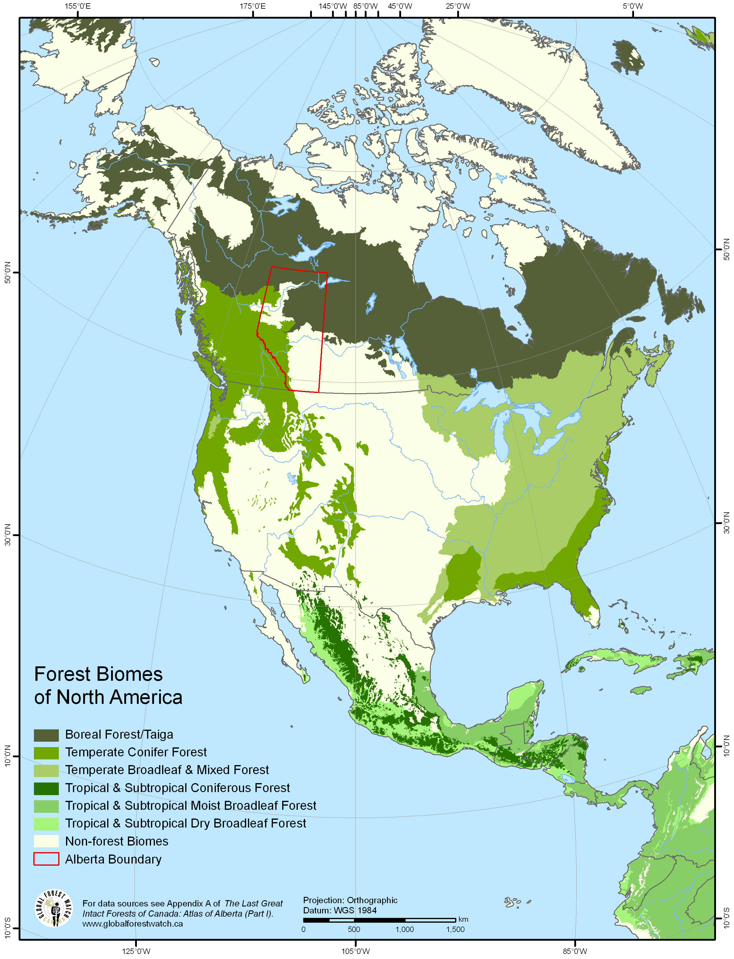 Forest Biomes Of North America