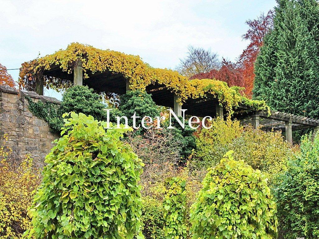Schloss und Park Altenstein   www.internec.de