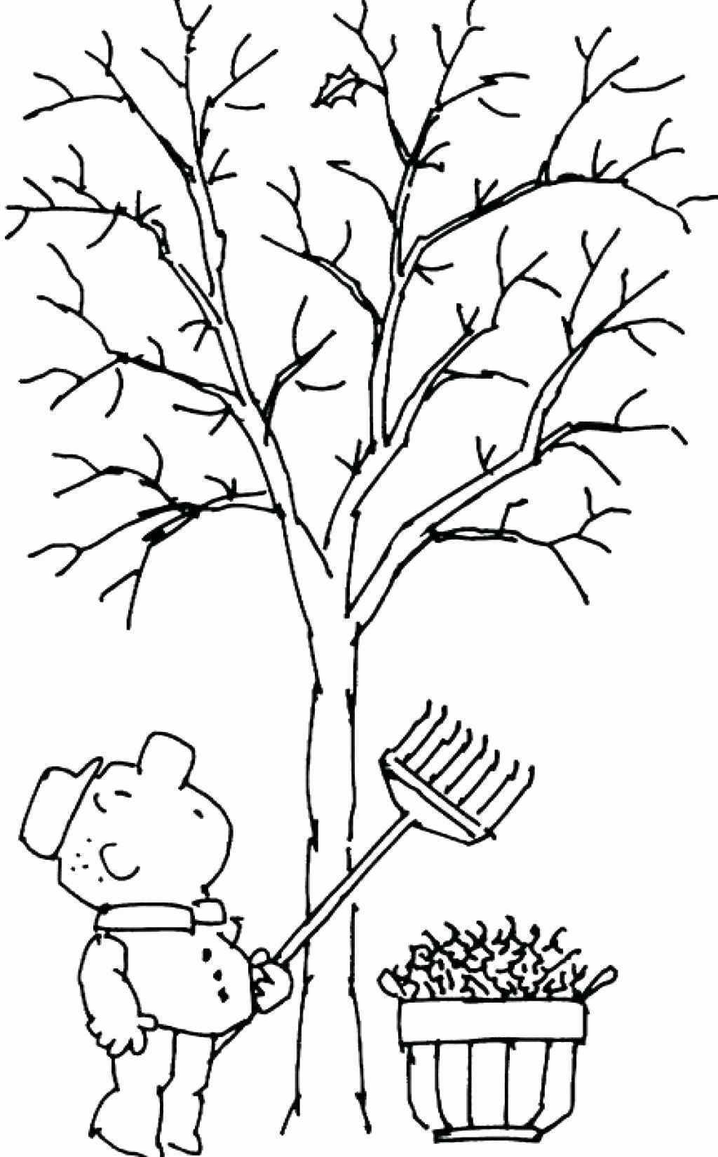 Tree Without Leaves Coloring Page New The Giving Tree Coloring