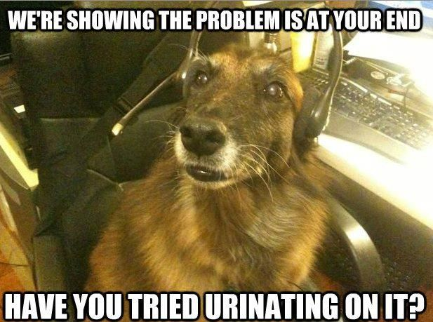 Dog Tech Support Funny Thank You Pictures Funny Thank You Dogs With Jobs